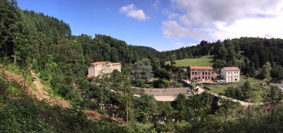 blue-cedars-panoramic1