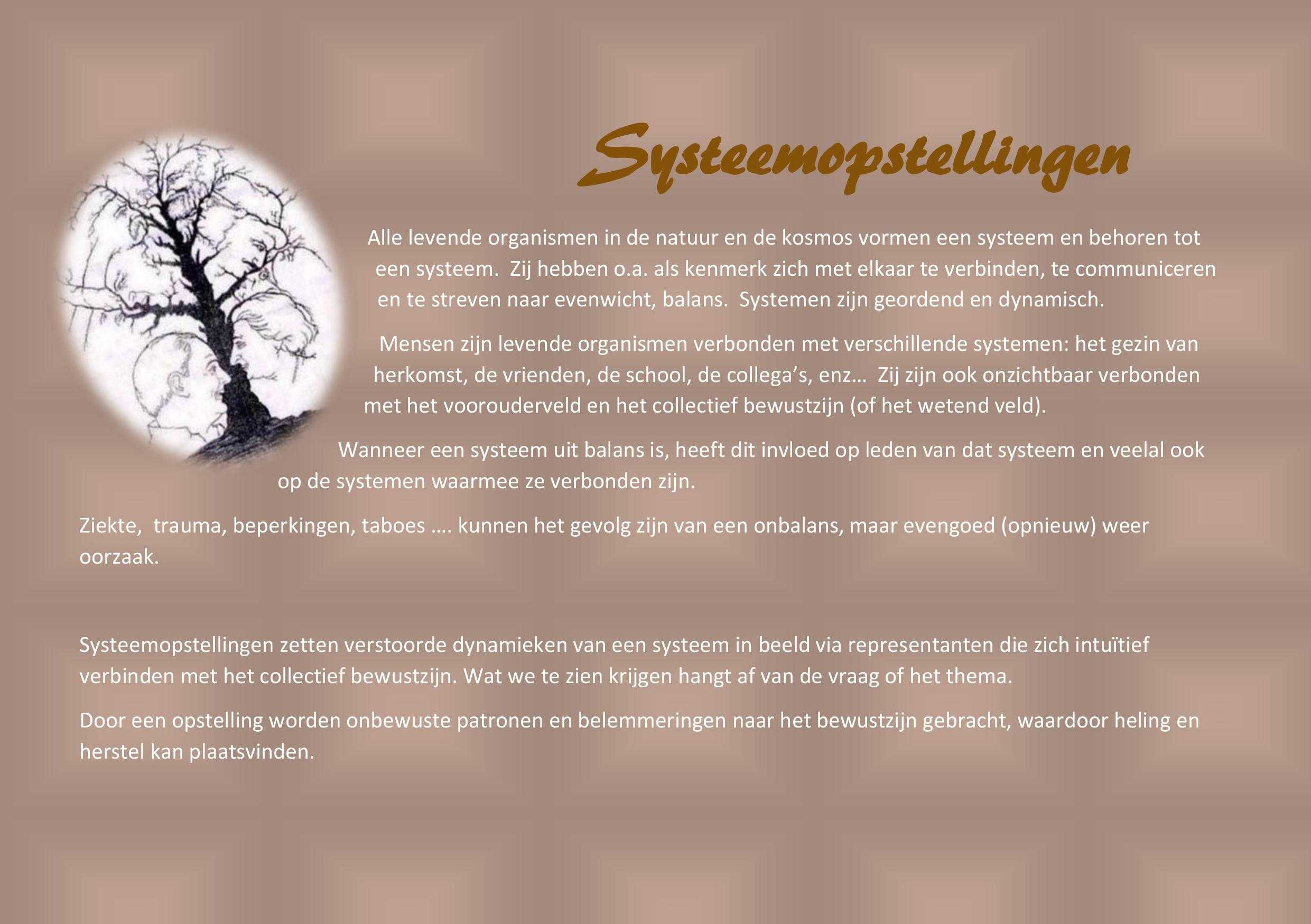 Info over Systeemopstellingen